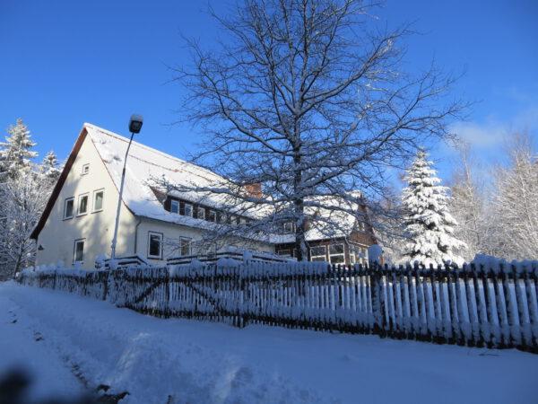 Villa Viriditas im Harz im Winter
